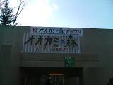 20081101104444